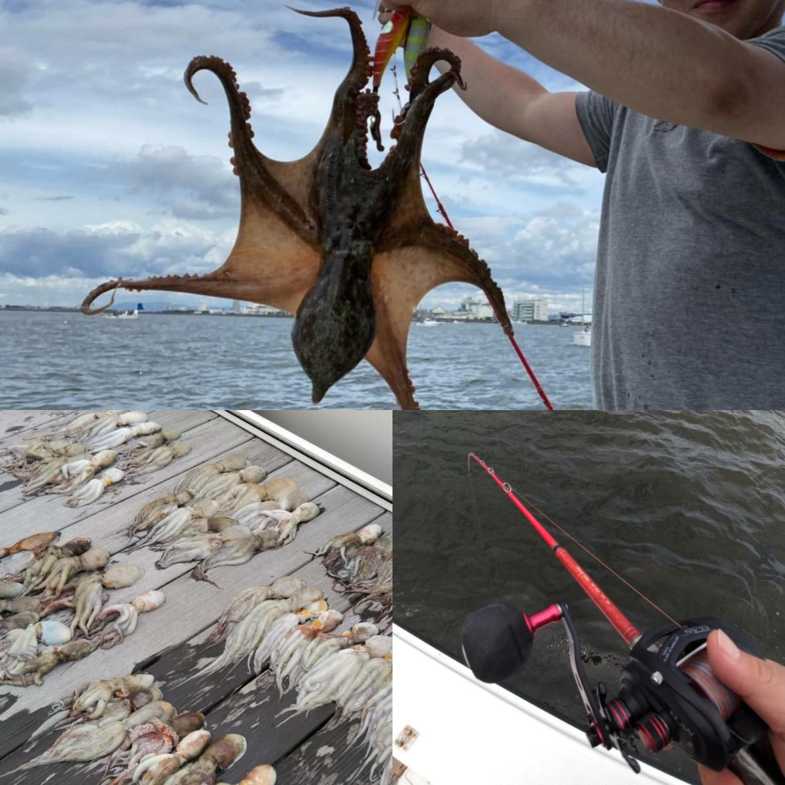 テンダァ職員の〇〇な休日・第22話~大漁!!関空近海にタコ釣りに行ってきました。~